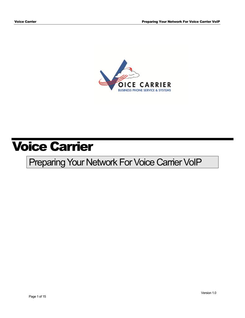 Voice Carrier Phone Setup guide | manualzz com