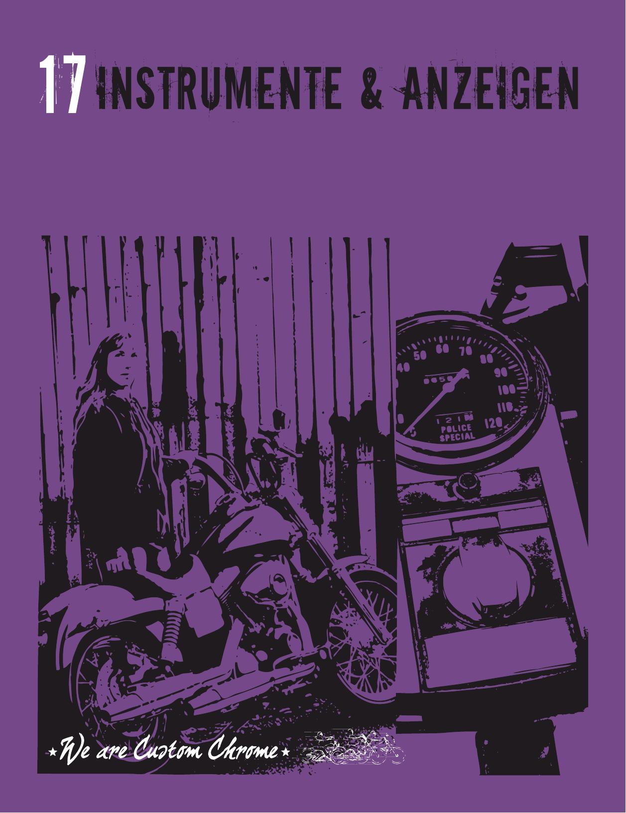 17Instrumente & Anzeigen | manualzz.com on