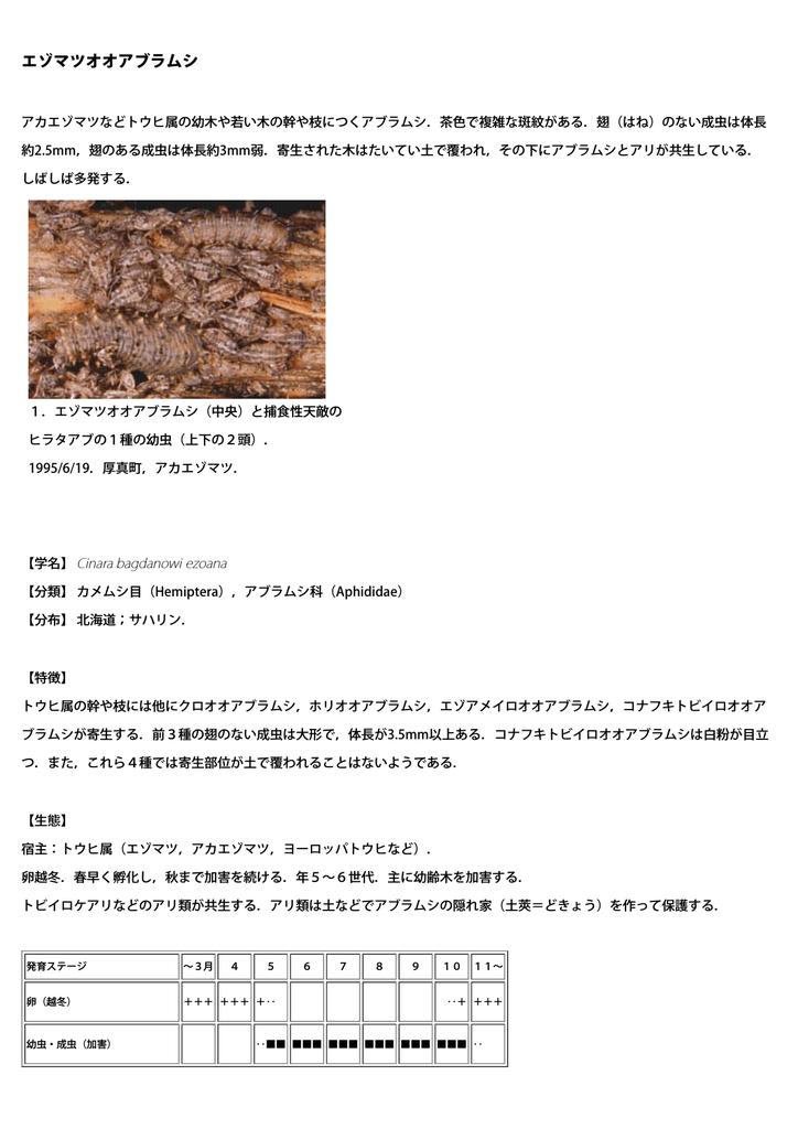 エゾマツオオアブラムシ - 北海道立総合研究機構 | Manualzz