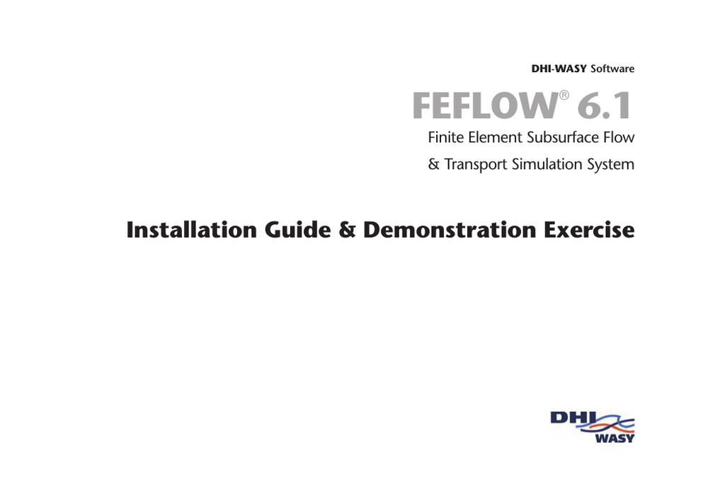feflow 6.1