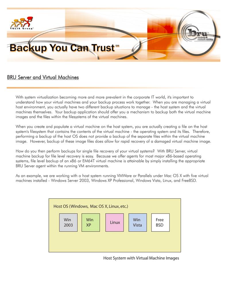 BRU w środowisku zwirtualizowanym (PDF, ang )   manualzz com