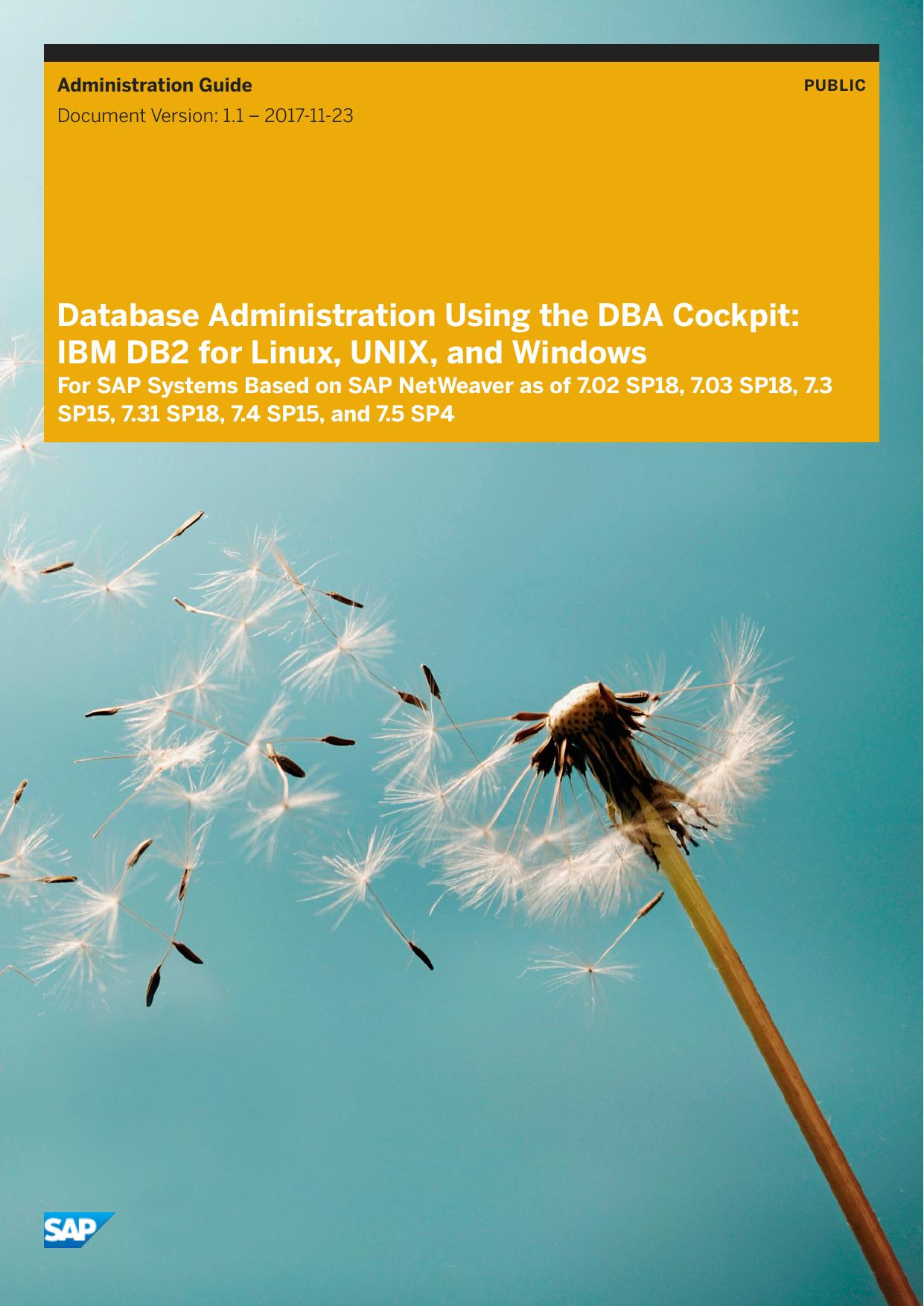 Database Administration Using the DBA Cockpit | manualzz com